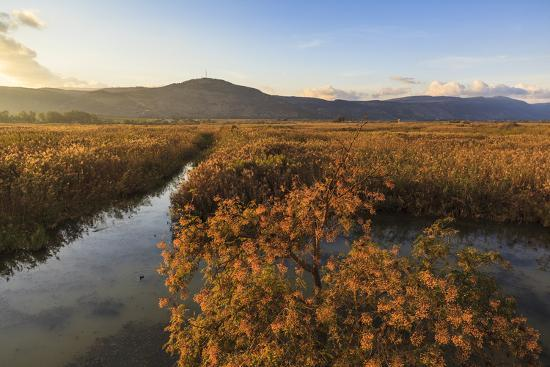 Hula Nature Reserve In Evening Light. Hula Valley. Israel-Oscar Dominguez-Photographic Print