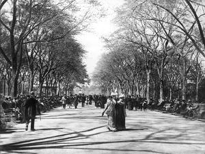Central Park Stroll by Hulton Archive