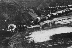 Mormon Treck by Hulton Archive