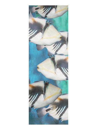 Huma Picasso Triggerfish 1-Melinda Bradshaw-Art Print