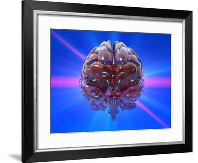 Human Brain And Beams of Light-Laguna Design-Framed Photographic Print