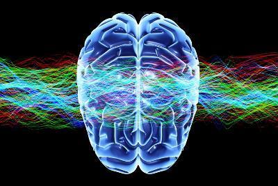 Human Brain, Conceptual Artwork-PASIEKA-Photographic Print