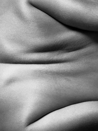 Human Form Abstract Body Part