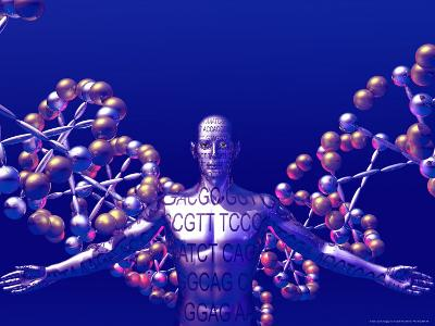 Human Genome-Carol & Mike Werner-Photographic Print