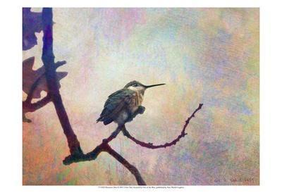 https://imgc.artprintimages.com/img/print/hummer-mist_u-l-f560nt0.jpg?p=0
