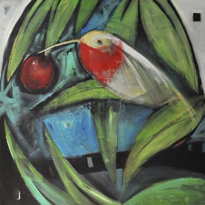 Humming Bird and Cherry-Tim Nyberg-Giclee Print