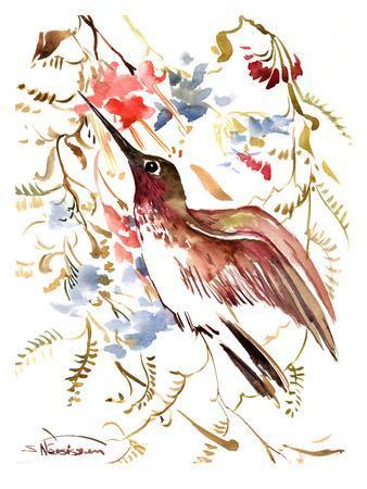 https://imgc.artprintimages.com/img/print/hummingbird-14_u-l-f7rqzz0.jpg?artPerspective=n