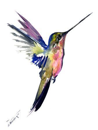 https://imgc.artprintimages.com/img/print/hummingbird-4_u-l-f999ww0.jpg?p=0