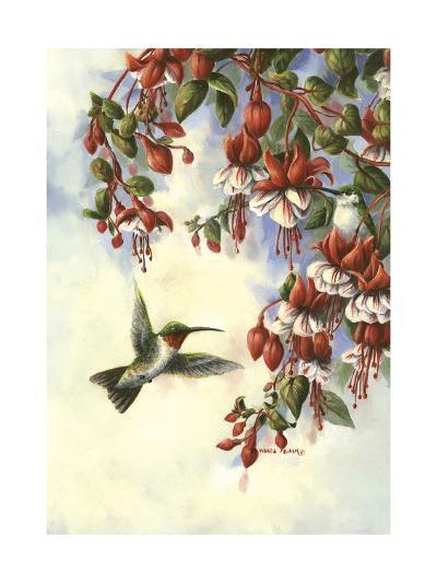 Hummingbird D-Wanda Mumm-Giclee Print