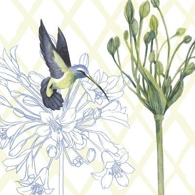 Hummingbird Dance III-Grace Popp-Art Print