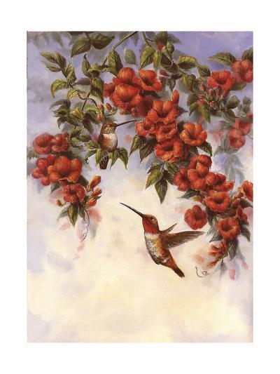 Hummingbird E-Wanda Mumm-Giclee Print