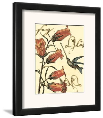 Hummingbird Reverie II--Framed Art Print