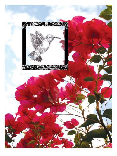 Hummingbird--Giclee Print