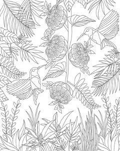 Hummingbirds & Flowers Design Coloring Art