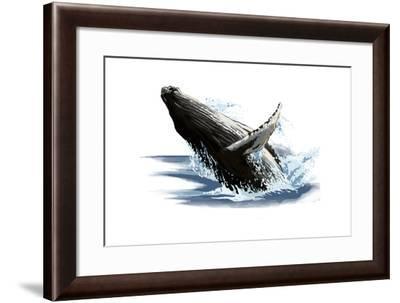 Humpback Whale - Icon-Lantern Press-Framed Art Print