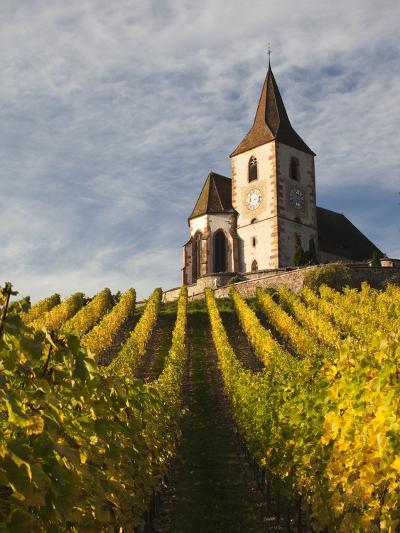 Hunawihr, Alsatian Wine Route, Alsace Region, Haut-Rhin, France-Walter Bibikow-Photographic Print