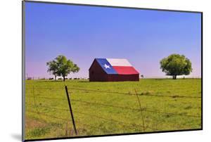An Old Barn Painted with a Texas Flag near Waco Texas by Hundley Photography