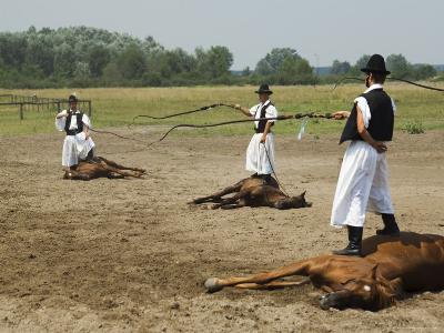 Hungarian Cowboy Horse Show, Bugaci Town, Kiskunsagi National Park, Hungary-Christian Kober-Photographic Print