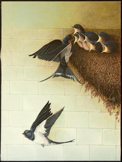 Hungry Mouths, 2011-Pat Scott-Giclee Print