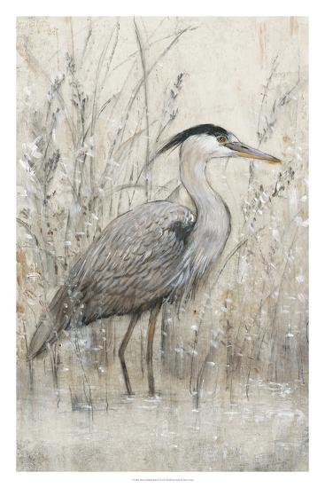Hunt in Shallow Waters I-Tim O'toole-Giclee Print