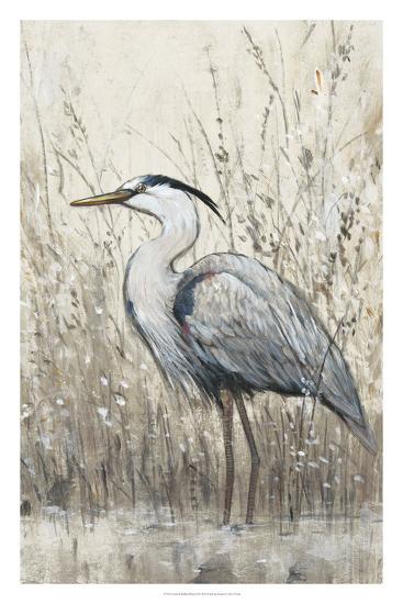 Hunt in Shallow Waters II-Tim O'toole-Giclee Print
