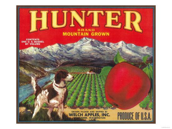 Hunter Apple Label - Wenatchee, WA-Lantern Press-Art Print