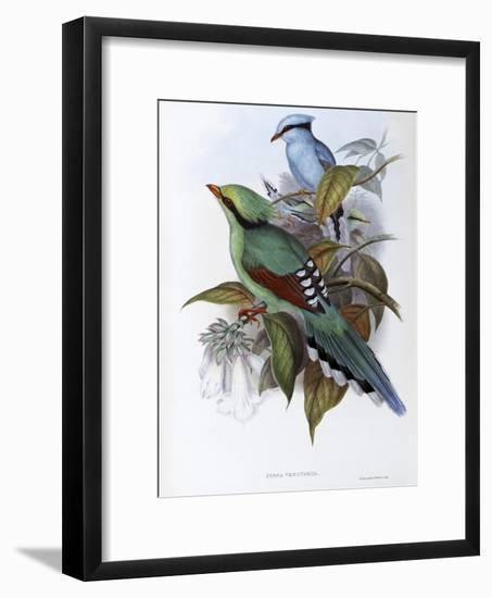 Hunting Cissa-John Gould-Framed Giclee Print