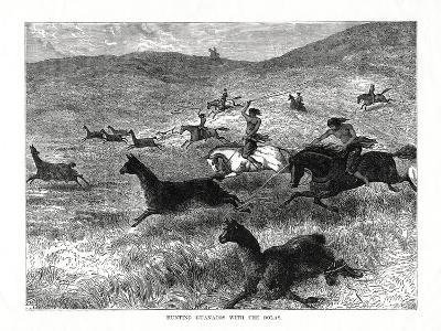 Hunting Guanacos with the Bolas, South America, 1877--Giclee Print