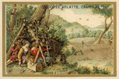 Hunting Larks--Giclee Print