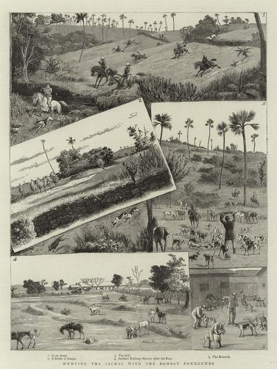 Hunting the Jackal with the Bombay Foxhounds--Giclee Print