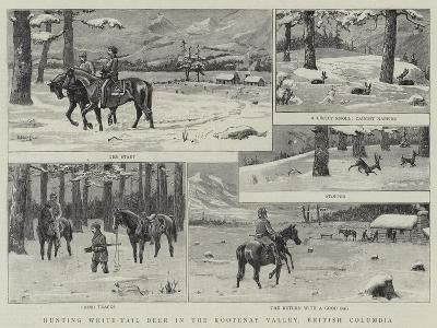 Hunting White-Tail Deer in the Kootenay Valley, British Columbia--Giclee Print