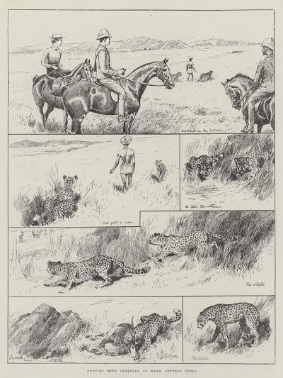 Hunting with Cheetahs at Dhar, Central India--Giclee Print