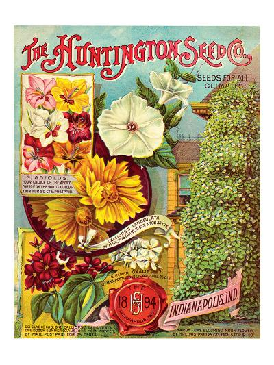 Huntington Seed Indianapolis--Premium Giclee Print