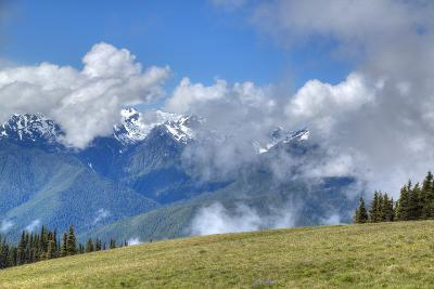 Hurricane Ridge, Olympic National Park, UNESCO World Heritage Site-Richard Maschmeyer-Photographic Print