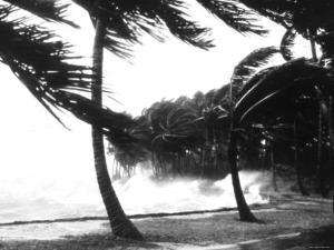 Hurricane Waves Strike the Seawall