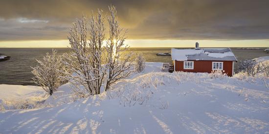 Hut in Reine (Village), Moskenesoya (Island), Lofoten, 'Nordland' (County), Norway-Rainer Mirau-Photographic Print