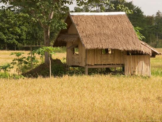 Hut in the Tambon Nong Hin Valley, Thailand-Gavriel Jecan-Photographic Print