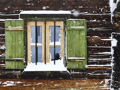 https://imgc.artprintimages.com/img/print/hut-window-with-shutters-snowdrift-detail_u-l-q1evdzr0.jpg?p=0