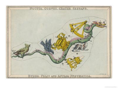 Hydra Constellation Including an Owl a Raven and a Sextant-Sidney Hall-Giclee Print
