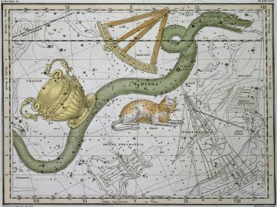 """Hydra, from """"A Celestial Atlas,"""" Published in 1822-A^ Jamieson-Giclee Print"""