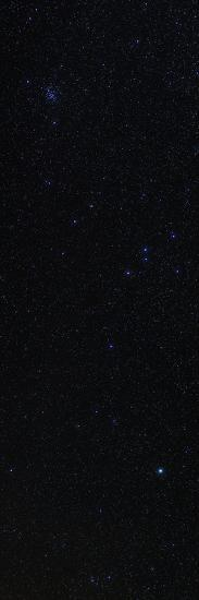 Hydra, with its Only Bright Star, Alphard, and the Beehive Star Cluster, in Cancer-Babak Tafreshi-Photographic Print