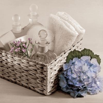 https://imgc.artprintimages.com/img/print/hydrangea-and-basket-2_u-l-pi4b8w0.jpg?p=0