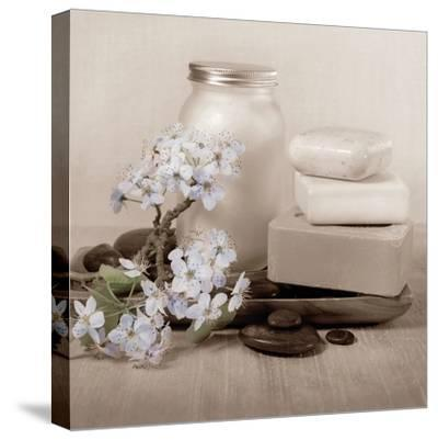 Hydrangea and Soap-Julie Greenwood-Stretched Canvas Print