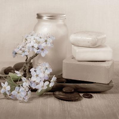 Hydrangea and Soap-Julie Greenwood-Art Print