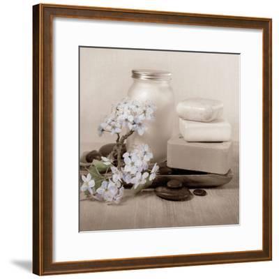 Hydrangea and Soap-Julie Greenwood-Framed Art Print