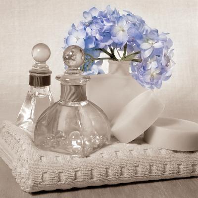 Hydrangea and Towel-Julie Greenwood-Art Print
