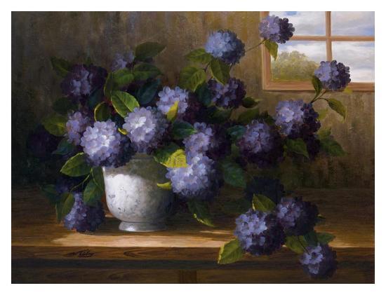 Hydrangea Blossoms II-Welby-Art Print