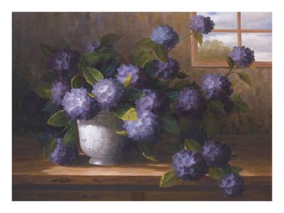 https://imgc.artprintimages.com/img/print/hydrangea-blossoms-ii_u-l-f53w450.jpg?p=0