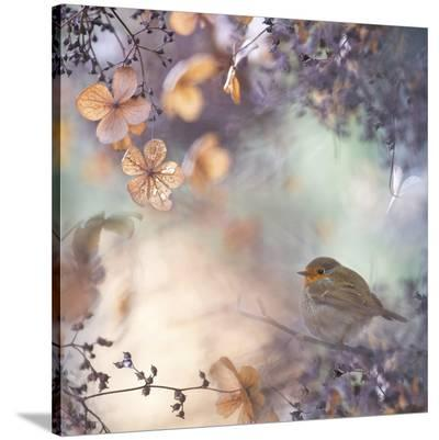 Hydrangea Fantasy--Stretched Canvas Print