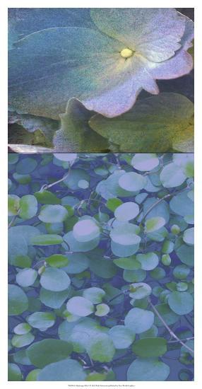 Hydrangea Mix I-Ricki Mountain-Art Print